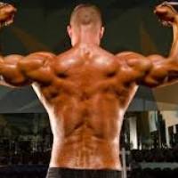 Lacrosse Back Muscles